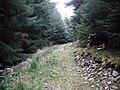 New track, Craig Hill - geograph.org.uk - 1524295.jpg