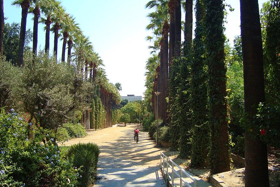 Nicosia historical Municipal gardens in Republic of Cyprus
