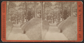 Northern Entrance to Congress Park, Saratoga, N.Y, from Robert N. Dennis collection of stereoscopic views.png