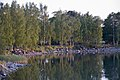 Nuorison juhlintaa Taivallahden rannassa koulujen päättymispäivänä 31.5.2008 - G816 - hkm.HKMS000005-km003zdp.jpg