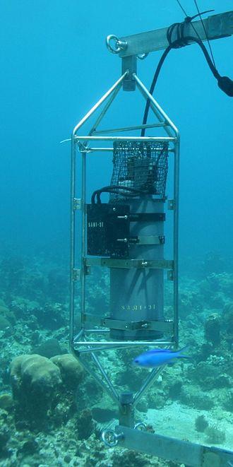 Ocean acidification - Image: Oa sami
