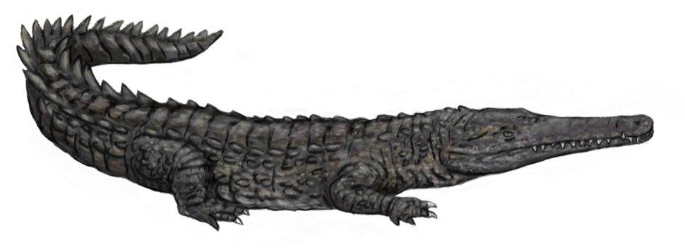 Oceanosuchus