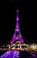Octobre rose pour le cancer du sein - Pink Eiffel tower, Tour Eiffel en rose - National Breast Cancer Awareness Month (21173140294).jpg