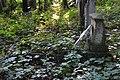 Old cemetery in Küstrin-Kietz 229.JPG