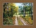Oleg Sokolovskiy landscape01.jpg