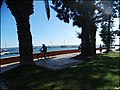 Olhao (Portugal) (49673935536).jpg