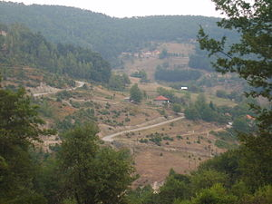 بييلو بوليي: Orahovica, Bijelo Polje