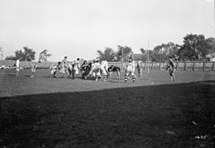 Ottawa and Hamilton Tigers football game 2.jpg