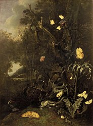 Otto Marseus van Schrieck: Plantes et insectes