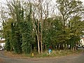 Oval wood, Worlebury Park Road - geograph.org.uk - 1026922.jpg