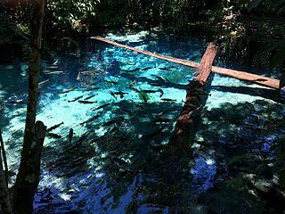 Gruta da Lagoa Azul State Park