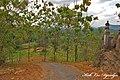PILANGROTO - panoramio (2).jpg