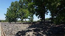 PL Belzec extermination camp 5.jpg