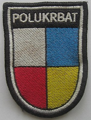 Polish–Ukrainian Peace Force Battalion - Image: POL UKR BAT