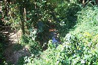 Vista do Parque (7)