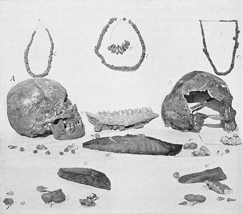 PSM V48 D033 Paleolithic remains discovered near menton 1892.jpg