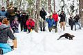 Pacific Fisher Release at Mount Rainier National Park (2016-12-17), 047.jpg
