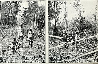 Pagan races of the Malay Peninsula (1906) (14781589525).jpg
