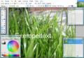 Paint.NET 3.36 Swedish Screenshot.png