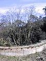 Pantà de Vallvidrera abans de la rehabilitació 190-9083 IMG.jpg