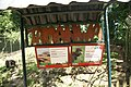 Paramaribo Zoo 20160926 reuzenmiereneter en agoeti.jpg