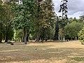 Parc Lefèvre - Livry Gargan - 2020-08-22 - 2.jpg
