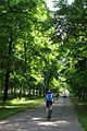 Parco di Monza - panoramio - Zhang Yuan (1).jpg