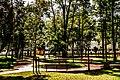 Parcul Central (9523421399).jpg