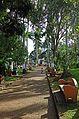 Parque Central de Atenas.jpg