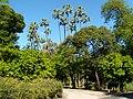 Parque de María Luisa Sevilla.jpg