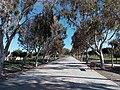 Parque del Andarax.jpg