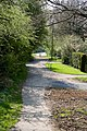 Path beside Lymington Bottom - geograph.org.uk - 1260662.jpg