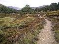 Path up Glen Derry - geograph.org.uk - 230781.jpg