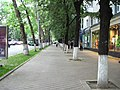 Pavement at Stefan cel Mare si Sfant bd. - panoramio.jpg