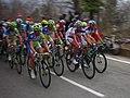 Peloton (2), 2012 Milan – San Remo.jpg