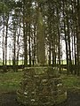 Percy's Cross - geograph.org.uk - 758026.jpg