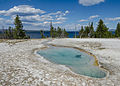 Perforated Pool, Yellowstone National Park 20110818 1.jpg