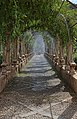 Pergola - Jardines de Alfàbia.JPG