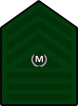 Herbert Bautista - Image: Philippine Army Master Sergeant Rank Insignia (Designated Command Sergeant Major)