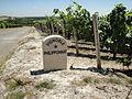 Philipponnat vineyard marker.jpg