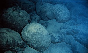 Seamount - Image: Pillow basalt crop l