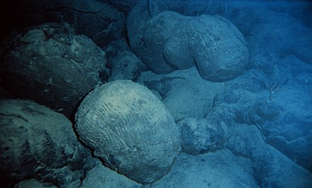 Pillow lava, a type of basalt flow that originates from lava-water interactions during submarine eruptions. Pillow basalt crop l.jpg