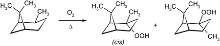 Oxidation zum Pinan-2-Hydroperoxid
