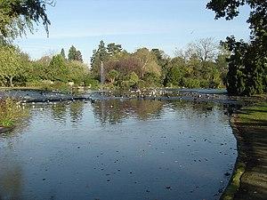 Pinner - The lake at Pinner Memorial Park