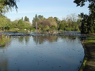 Pinner - The lake at Pinner Memorial Park