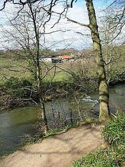 Plessey Mill Farm, Northumberland - geograph.org.uk - 96362