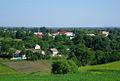 Pluzhne General view. Crop.jpg