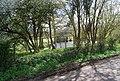 Pond, Weller Town Rd - geograph.org.uk - 1260571.jpg