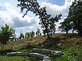 Pope Farm Conservancy - panoramio - Corey Coyle (3).jpg
