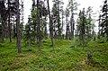 Porjus Sweden - panoramio (1).jpg